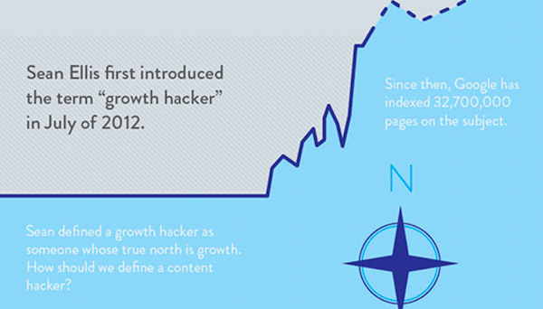 Sean Ellis growth hacking