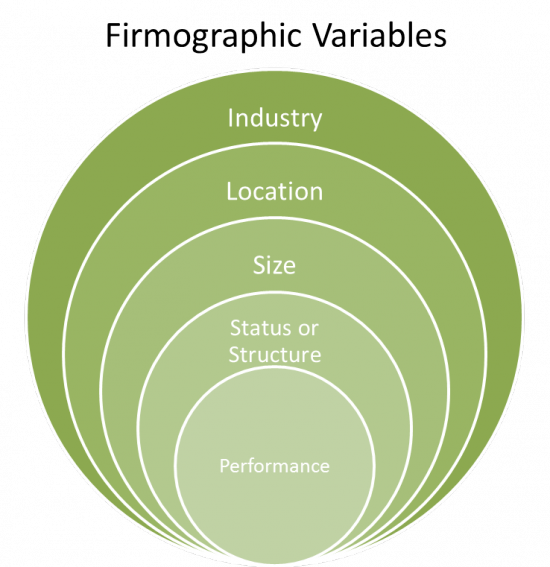 firmographic-variables-segmentation-framework-inbound-marketing-agency